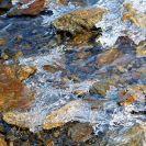 Potok v srpnu